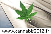 Cannabis 2012 Veille politique sur la sortie de la prohibition en France. Publication du Mouvement des Libéraux de Gauche, en collaboration avec le Centre d'Information et de Recherche Cannabique et Cannabis Sans Frontières.