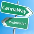 Cannaway Une communauté indépendante de cannabiculteurs, de passionnés, d'utilisateurs thérapeutiques et de militants impliqués et motivés par la cause cannabique. (…)