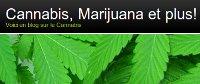 Cannabis, Marijuana et plus… Ce blog étonnant de wordpress est consacré à partager tout l´information qui existe sur le cannabis.  Toutes les matières, des avantages sociaux et économiques énormes aux applications médicinales de marijuana seront discutées ici. (…)