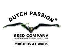 Dutch Passion Un site hollandais (avec une partie traduite en français) de vente en ligne de graines, et autres produits dérivés.