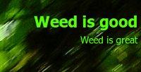 Weed for free Un site en anglais, traitant de l'herbe en générale. Ce blog fait ouvertement l'apologie du cannabis, ce qui est illégal en France, mais pas aux USA!