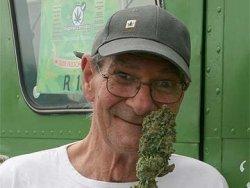 Cannabis Culture - Dakta Green - Nouvelle-Zélande