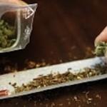 drogues_lonu_classe_le_maroc_parmi_les_plus_gros_producteurs_de_cannabis-150x150
